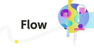 FLOW توکن های غیرمثلثی بلاکچین NFT