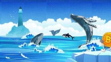 نهنگ های بیت کوین