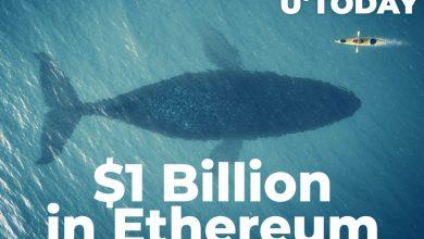 نهنگ های رمزارزی